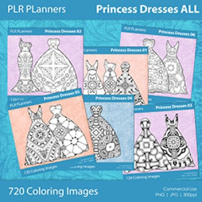 Princess Dresses ALL